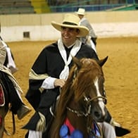 North American Peruvian Horse Association Chris Austin