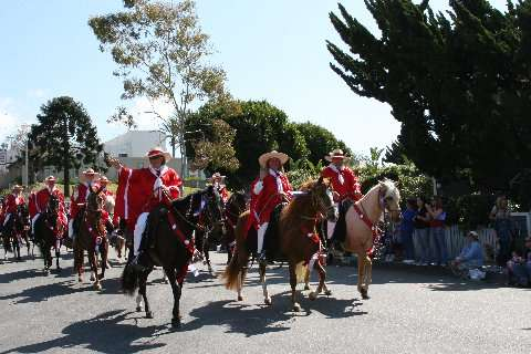Southern California Peruvian Paso Horse Club Parade Team
