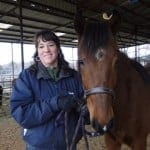 Rescued Peruvian Horse Viajero