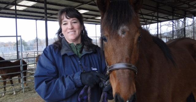 Lone Star Horse Center Rescues Peruvian Horse