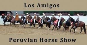 **Los Amigos Peruvian Horse Show
