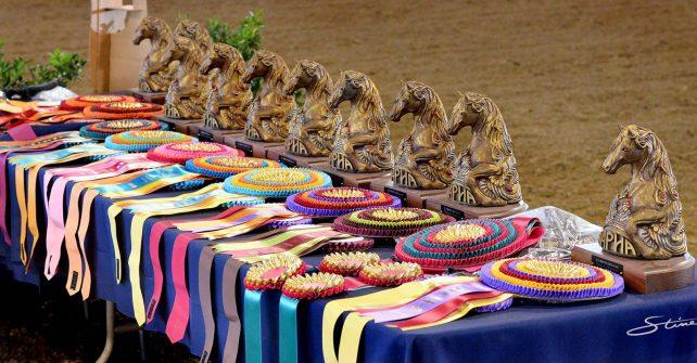 NAPHA US National Peruvian Horse Show