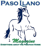 Paso Llano Magazine