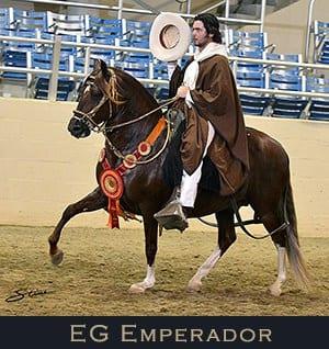 EG Emperador Medallon de Plata Stallion