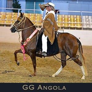 GG Angola Medallon de Plata Mare
