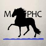 Northern Lights Peruvian Horse Club