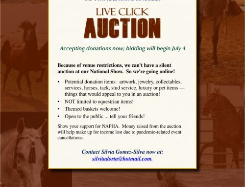 Live Click Auction – Bidding Begins July 4th!